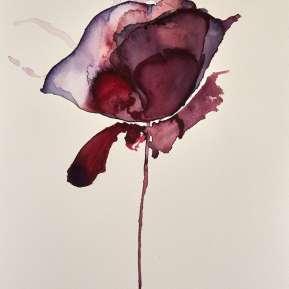flor alquimica 2