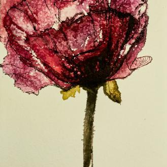 flor alquimica 19
